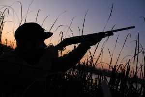 Prévisions météo pour la chasse à la hutte