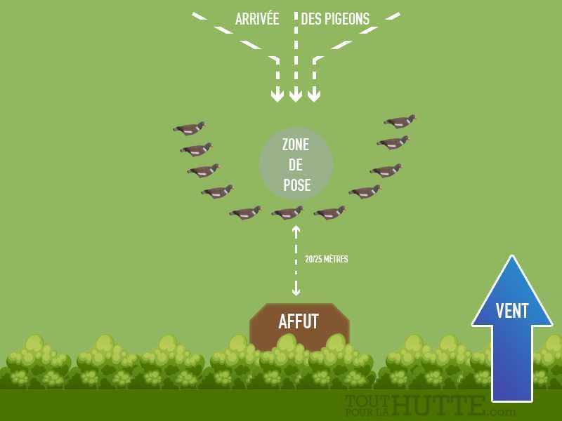 5 attelages pour chasser le pigeon