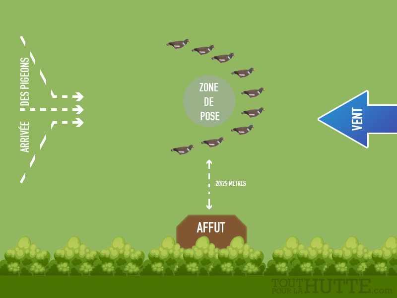 5 techniques d'attelage pour chasser le pigeon