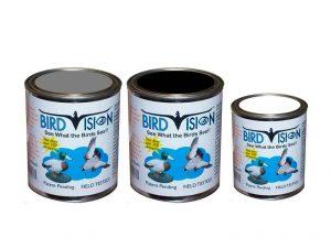 Peintures Bird Vision
