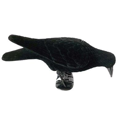 forme-de-corbeau-mangeur-floquee-transp