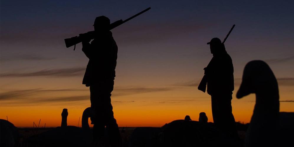 nouveauté chasse 2019